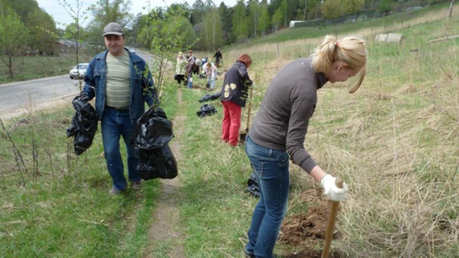 В этом году в Обнинске уже сейчас требуется 300 саженцев для посадок на субботниках