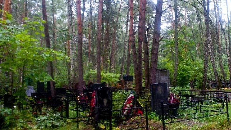 Судебный процесс в Обнинске по поводу размещения фотографии надгробного памятника в интернете продолжится 12 октября