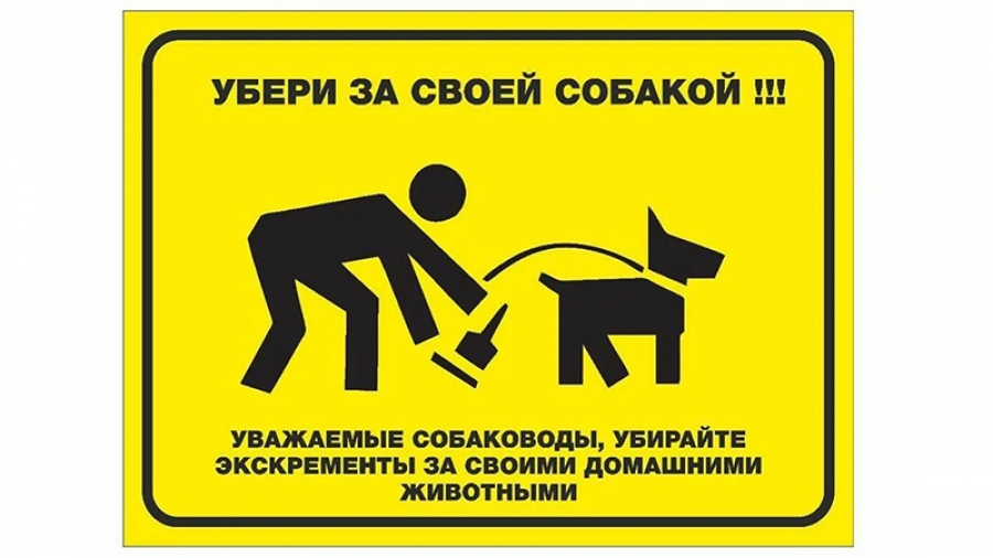 Жители Обнинска массово жалуются на появившиеся из-под снега продукты жизнедеятельности четвероногих питомцев
