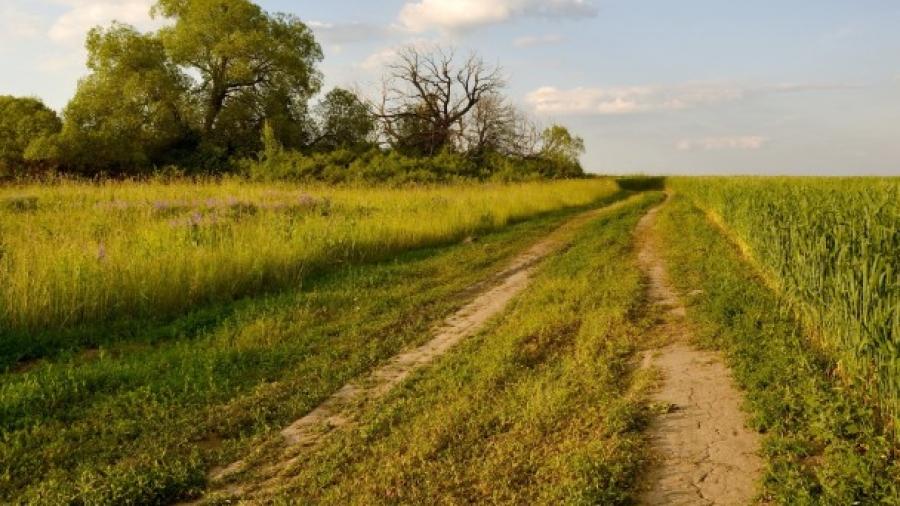 К Обнинску присоединят земли сельхозназначения у Кривского