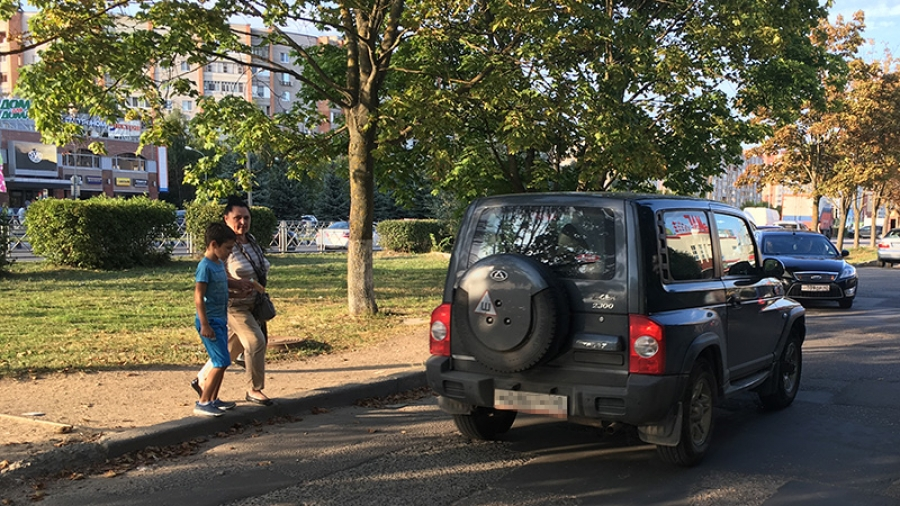 Для безопасности пешеходов возле «Маргариты» уберут три больших дерева