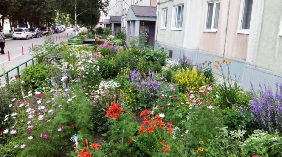 В Обнинске выберут лучший цветущий двор