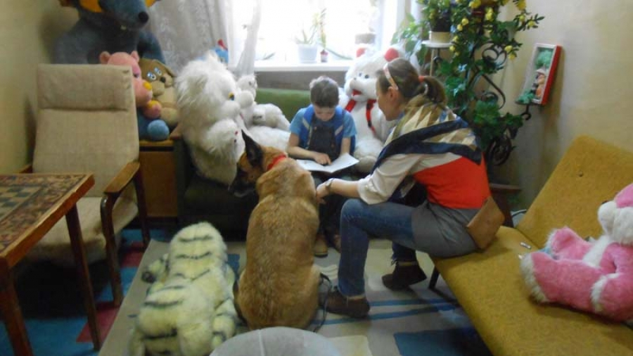 Дети читают собакам: многодетные мамы Обнинска запустили проект канистерапии