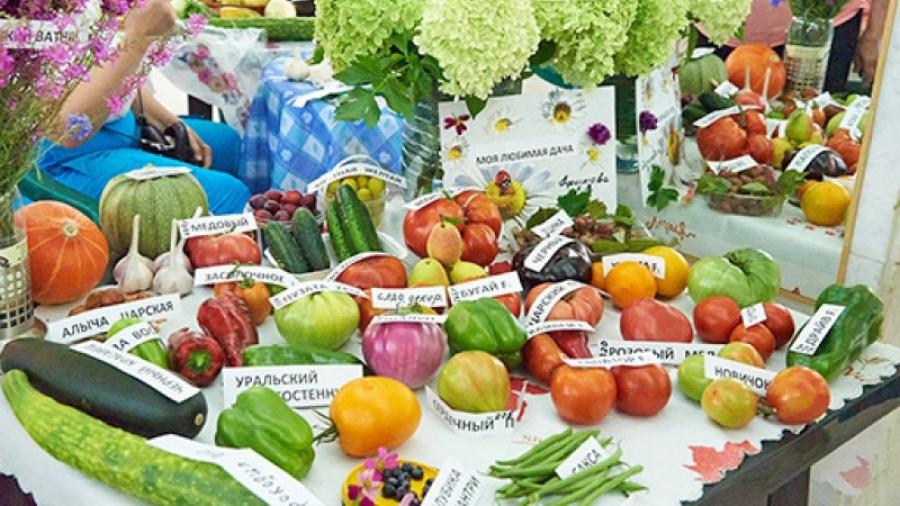 Обнинские садоводы готовятся к августовской выставке