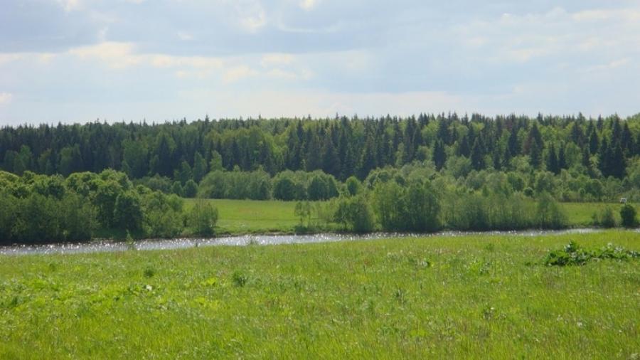 В Калуге пройдет международный экологический форум