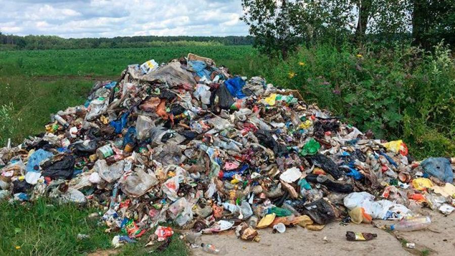 Калужские парламентарии предлагают ужесточить контроль за несанкционированными свалками в лесах
