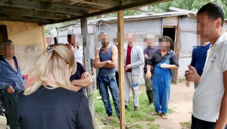 В Жуковском районе выявили 14 нелегалов, выращивавших кабачки