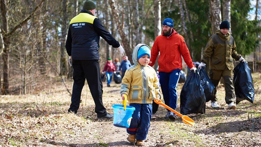 Обнинск поделится опытом с Калугой, как заброшенный лес превратить в зону отдыха для всех горожан