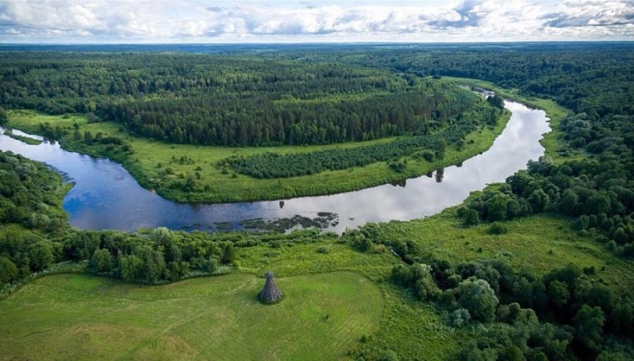 Школьники Калужской области напишут экологический диктант