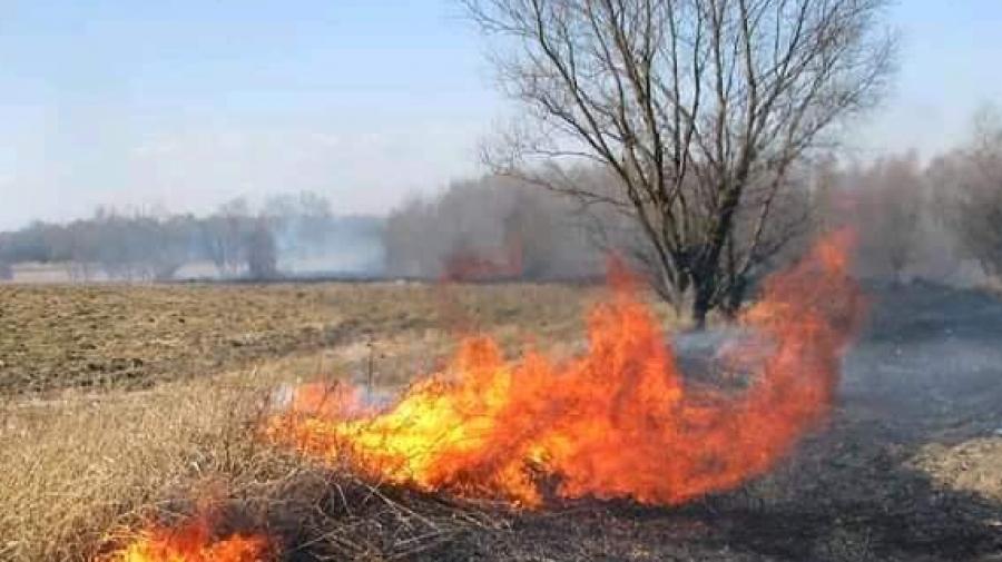 В Калужской области продолжается пал травы