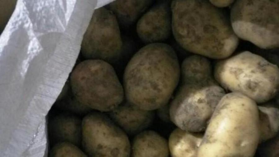 В Жукове ищут «картофельных мошенников»