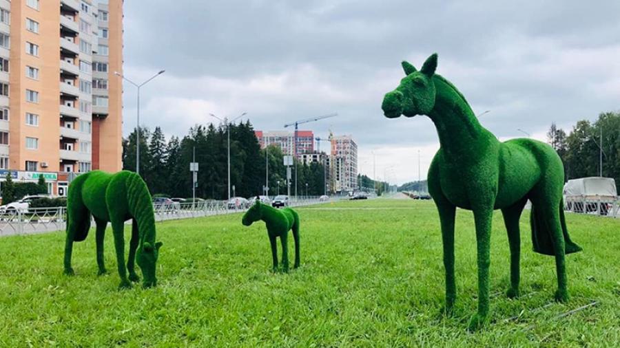 В Обнинске ко Дню города появились новые топиарные фигуры
