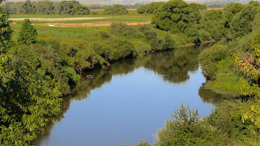 Улучшить качество воды в Протве собираются с помощью предпринимателей