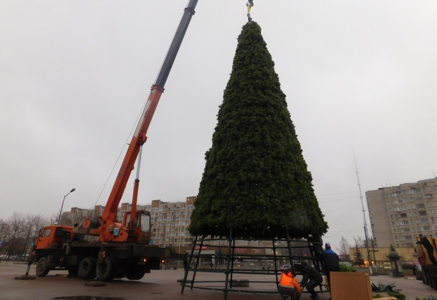 Главная городская елка засияет огнями к концу недели