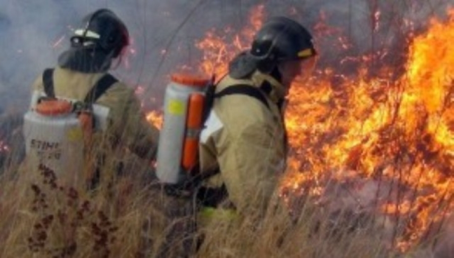 В 19 из 26 муниципальных образованиях Калужской области введен особый противопожарный режим