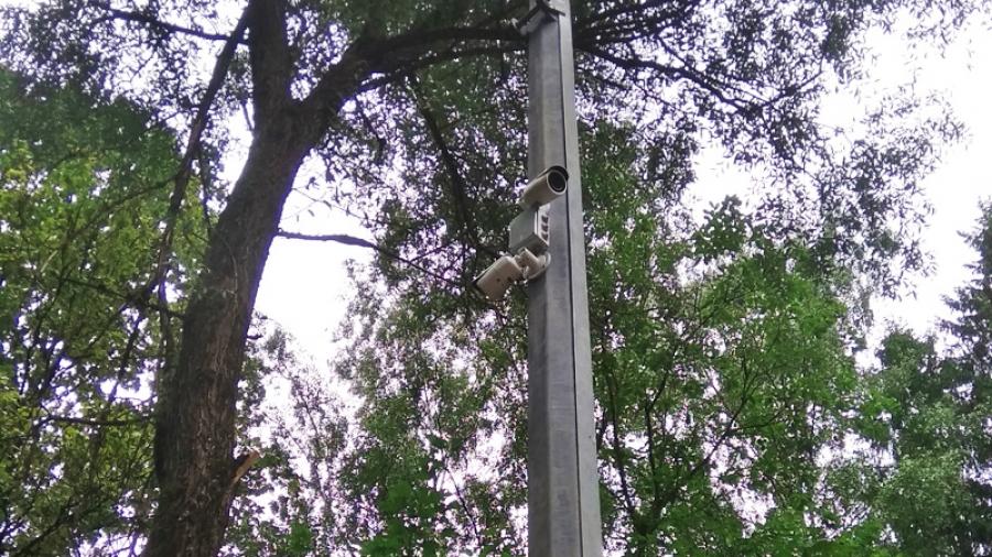 Лес online: к концу недели в Гурьяновском лесу заработает система видеонаблюдения