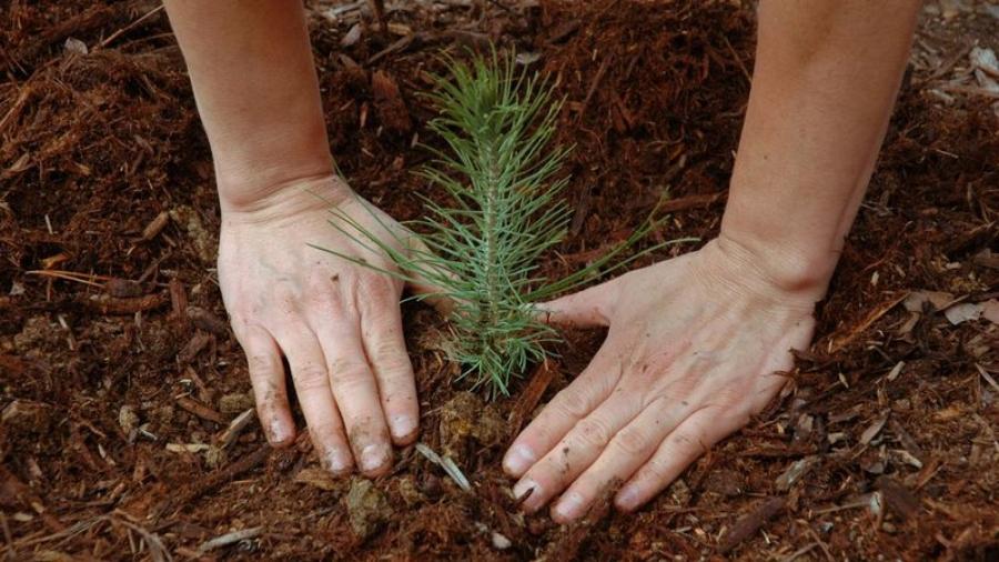 В Калужской области пройдет V Международный экологический форум