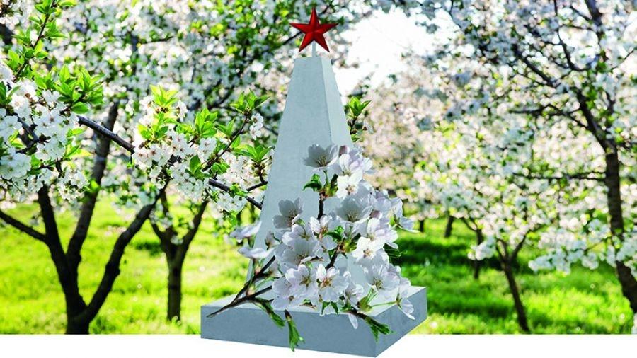 Обнинск присоединился к проекту «Сады памяти»: завтра в наукограде приступят к посадке деревьев