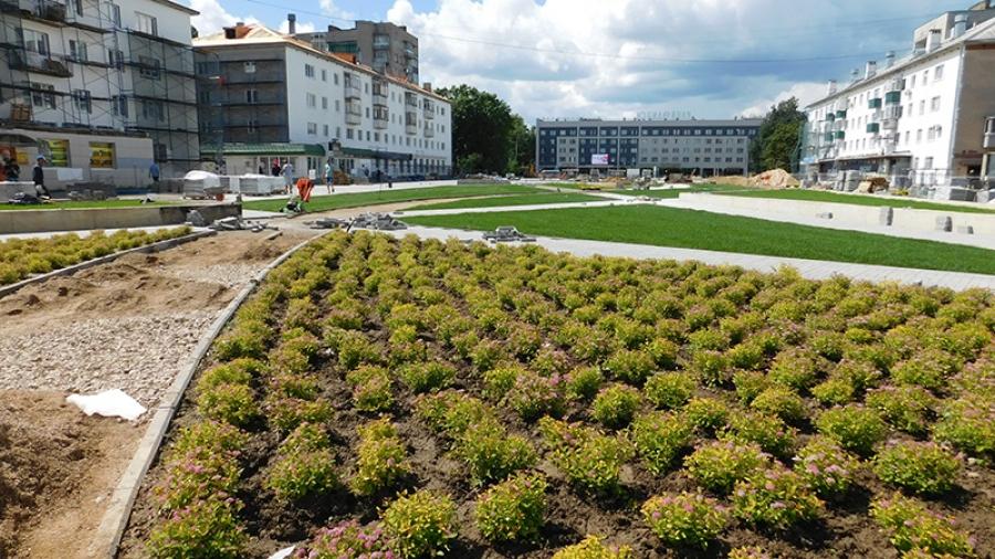 Улица Лейпунского покрылась «ковром» из кустов спиреи. Но это только начало