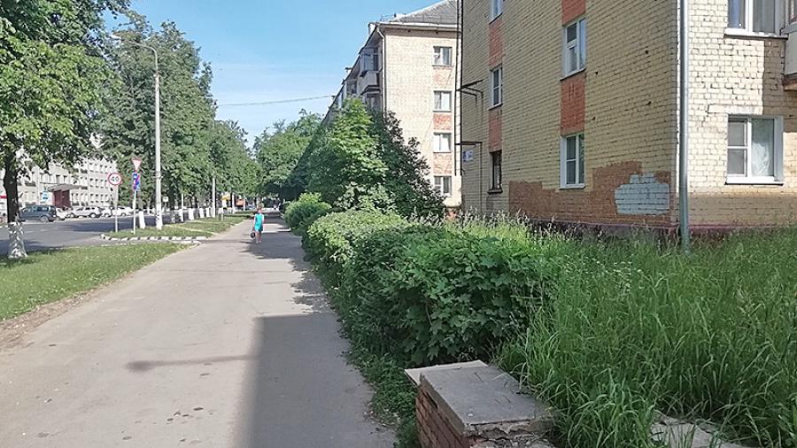 Вопреки жалобам жителей обнинские УК заявляют о 100%-ном покосе травы на своих территориях