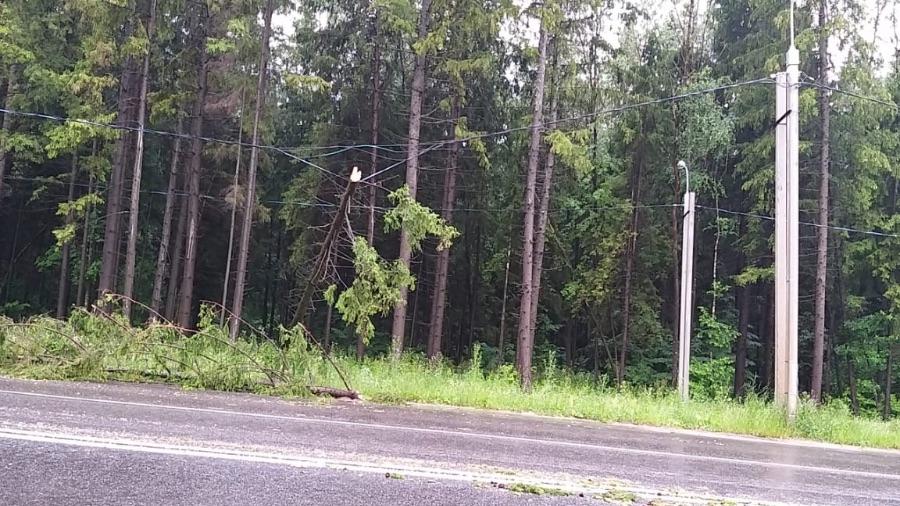 В ходе налетевшего на Обнинск урагана никто не пострадал