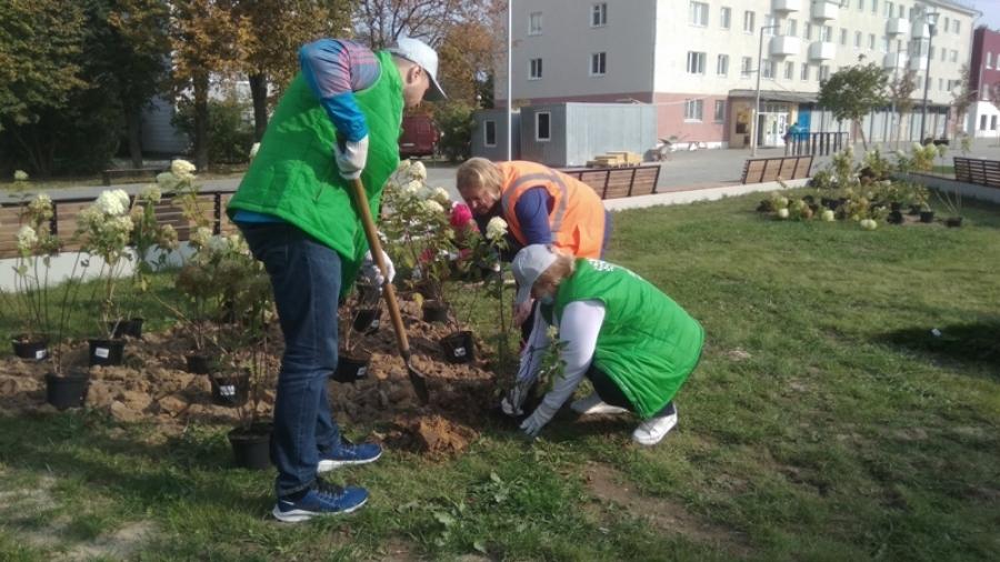 Волонтеры Росатома высадили в Обнинске деревья и кустарники