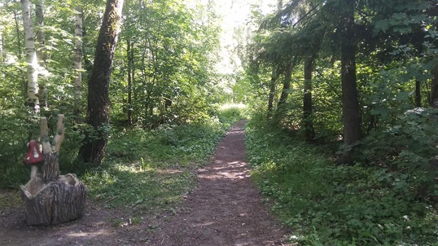 Благоустраивать Гурьяновский лес в этом году будет обнинская компания