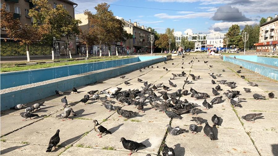 Благоустройство, которое мы ждали давно: улицу Лейпунского в Обнинске начнут реконструировать уже на днях