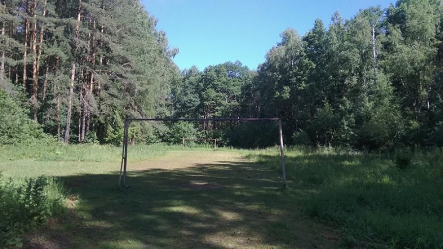 Гурьяновский лес выставили на торги