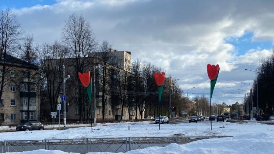 В Обнинске выросли 6-ти метровые тюльпаны