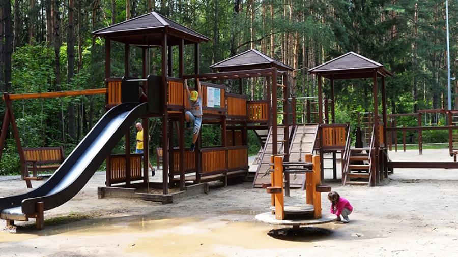 В Калуге хотят Губернский парк развивать по примеру Гурьяновского леса