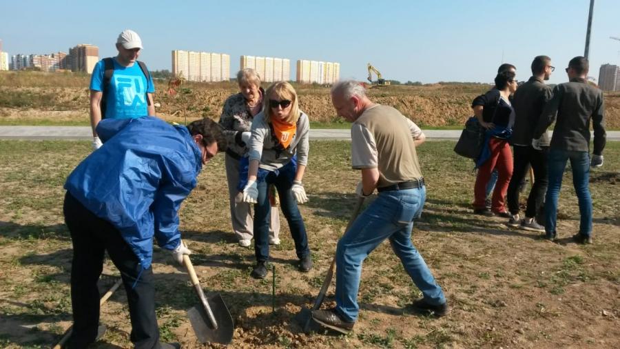 55 новых деревьев посадил в Обнинске «зеленый десант» Росатома