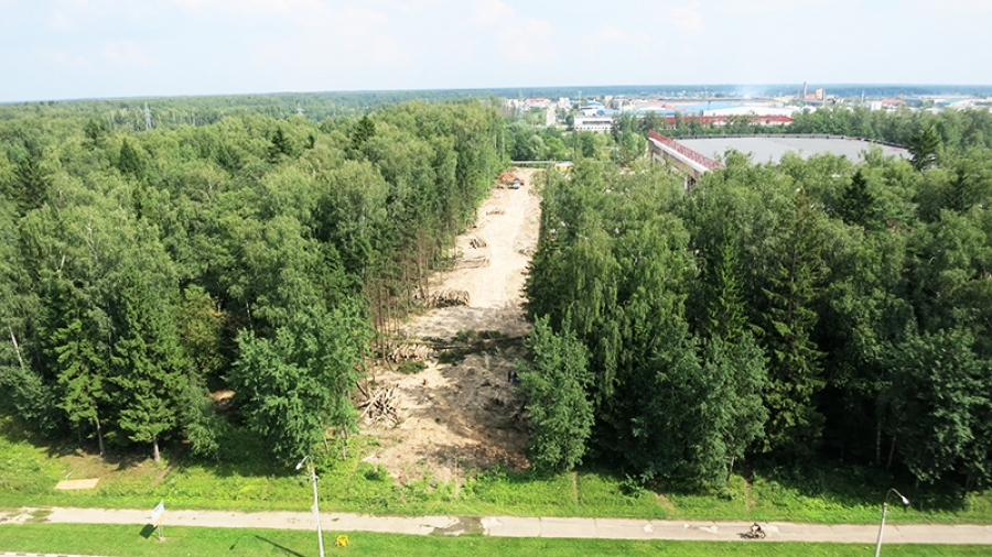 Лес за обнинским хлебозаводом вырубили не под стоянку или многоэтажки
