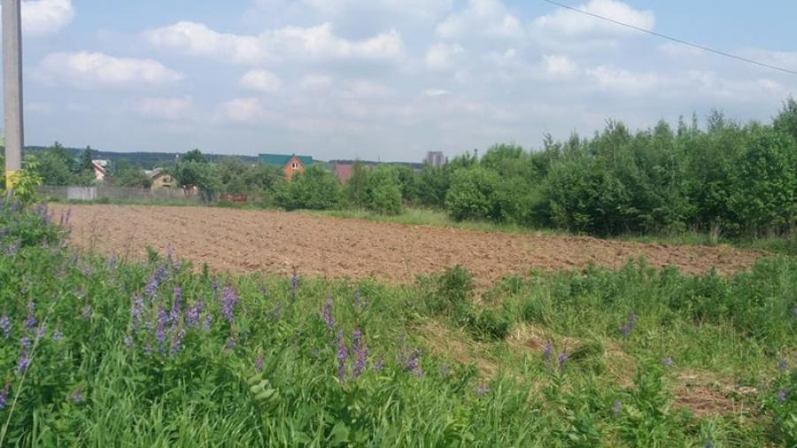 Обнинским многодетным семьям вновь обещают выделить землю в Спас-Загорье