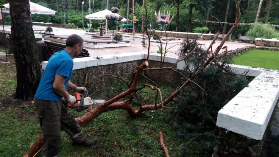 В Обнинске продолжают убирать деревья, поваленные во время грозового фронта в пятницу