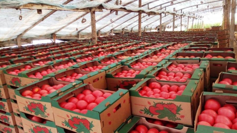 Роскачество будет проверять продукцию производителей Калужской области
