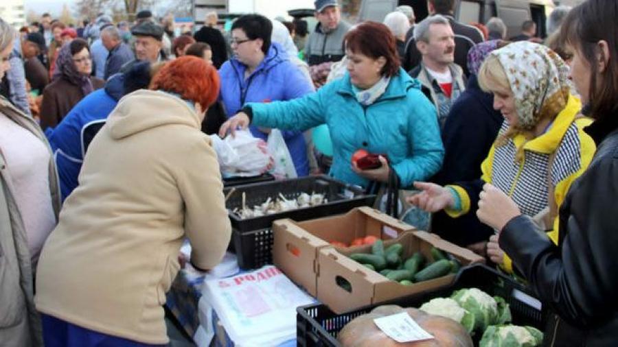 Сельскохозяйственная ярмарка в Обнинске переезжает