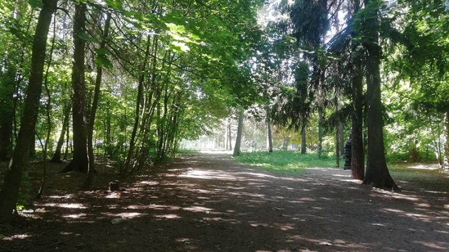В Обнинске маленький городской парк буквально задыхается в тесных рамках своей территории.
