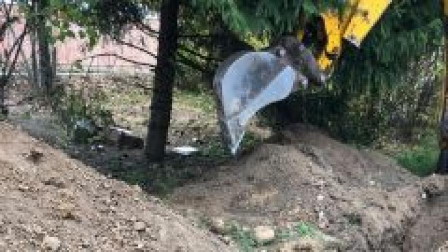 В Боровском районе нашли кости двух человек