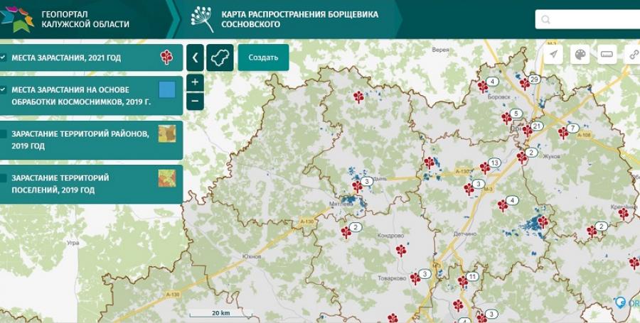 Обнинск - на втором месте в регионе по отметкам на интерактивной карте распространения борщевика