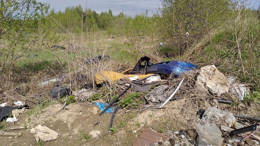 В Калужской области нашли способ очистить леса от свалок