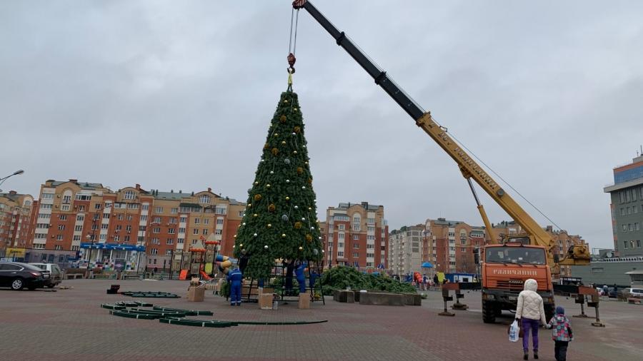 В Обнинске завершается монтаж главной городской елки у Плазы