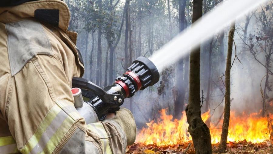Калужская область попала в список пожароопасных регионов
