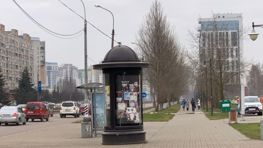 В Обнинске деревья в районе Парка Победы возьмут под охрану