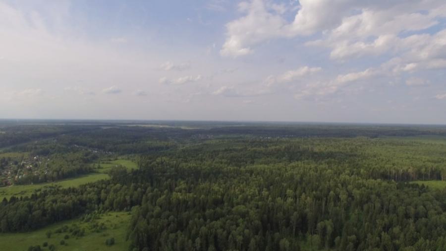 В Боровском районе многодетным выделят землю