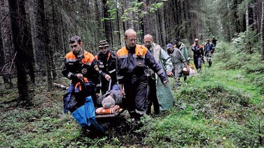 Еженедельно спасатели выводят порядка 20 заблудившихся человек из лесов Боровского, Жуковского и Малоярославецкого районов