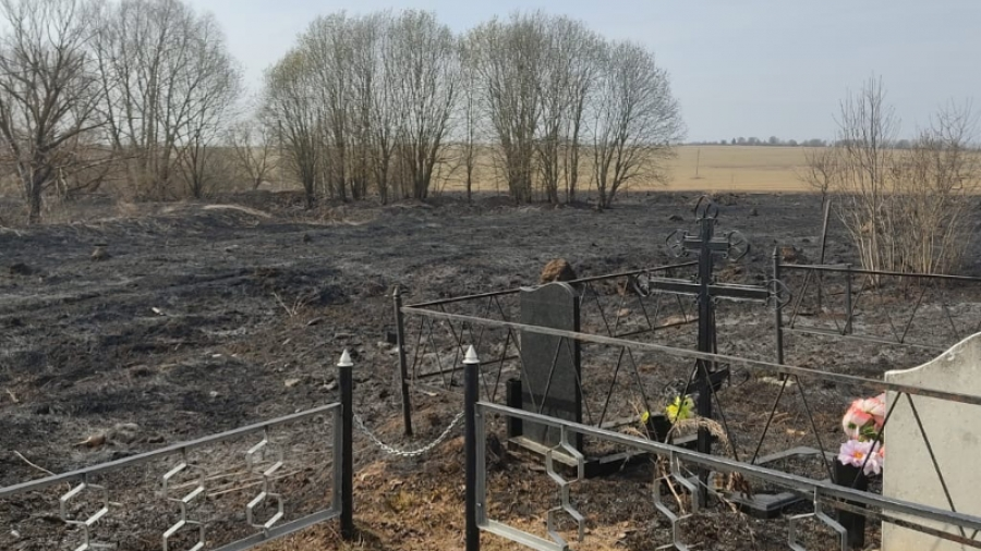 В Жуковском районе загорелось кладбище