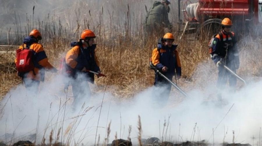 За неделю в Калужской области произошло 6 природных пожаров