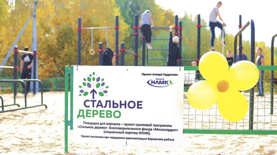Жители Обнинска, Балабаново, Ворсино, Боровска и Кабицыно могут получить гранты до 300 тыс. руб. на социальные проекты