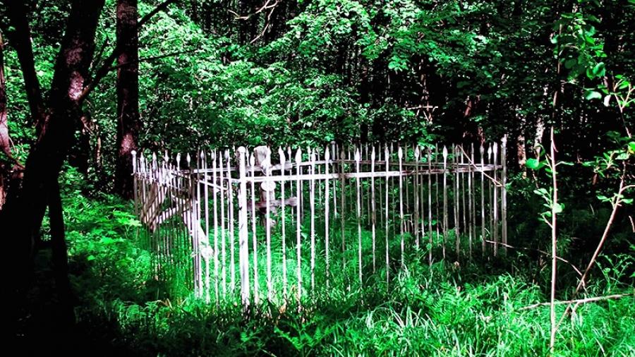 В Калужской области продолжают ставить на кадастровый учет лесные кладбища